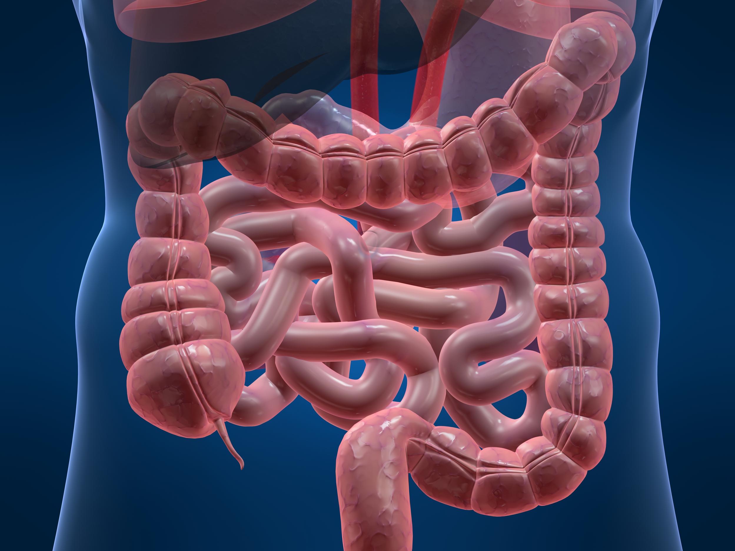 Čišćenje creva i stomaka